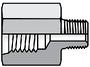 Female Straight Thread Adapter